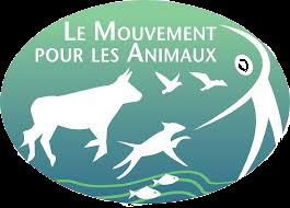 Le Mouvement Pour Les Animaux